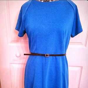Bold blue dress with skinny belt